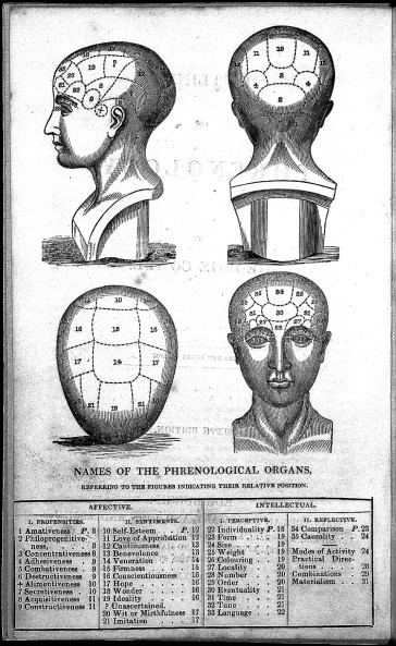 L0022893 George Combe, names of phrenological organs, 1836